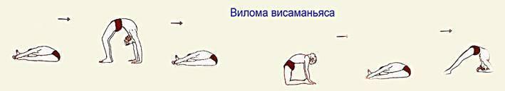 Анулома вилома дыхательная практика: пранаяма техника выполнения, отзывы