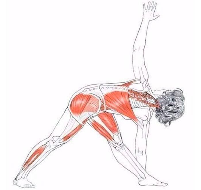 Надрыв мышцы бедра: симптомы и лечение в клинике стопартроз в москве