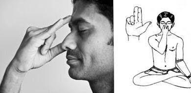 Тема 5 медитация. анулома вилома и прана шуддхи. древние тантрические техники йоги и крийи. вводный курс