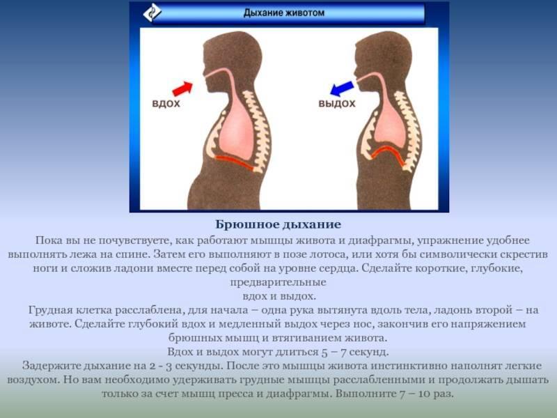 Способы тренировки органов дыхания