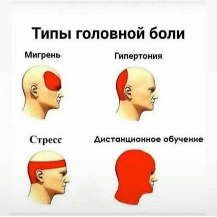 Постоянные, частые и сильные головные боли: почему может болеть голова?  к какому врачу обращаться при головных болях?