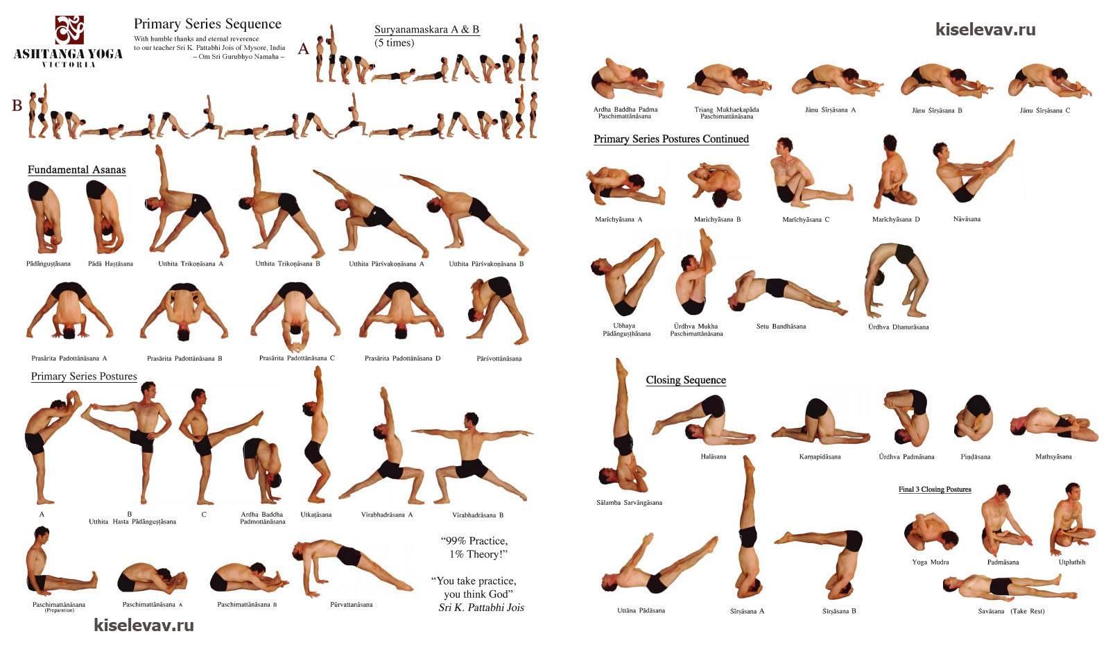 Йога айенгара для начинающих — основы занятий