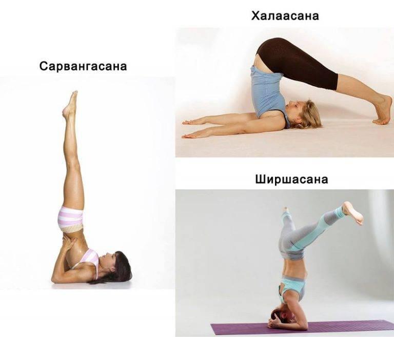 Можно ли заниматься йогой во время месячных: комплекс упражнений для начинающих