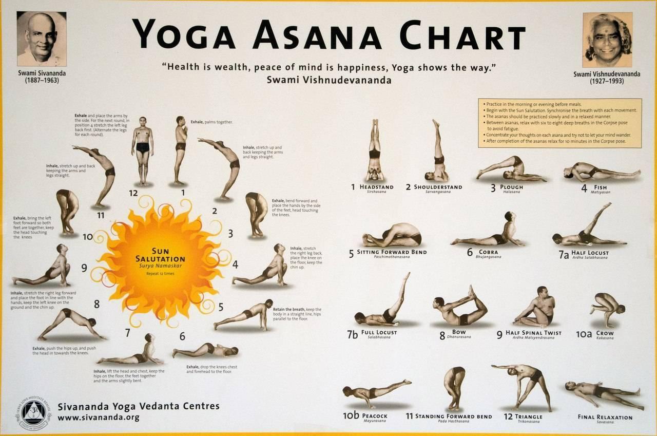Хатха-йога — википедия. что такое хатха-йога