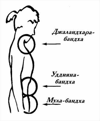 Мула бандха: техника выполнения, польза и противопоказания