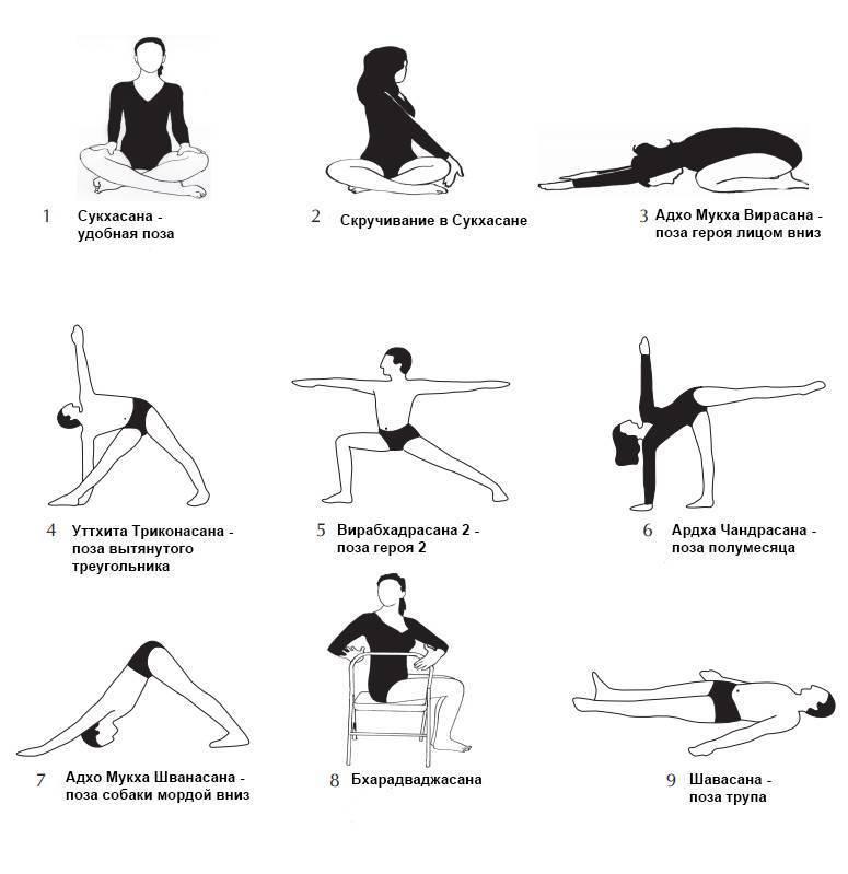Йога для начинающих: какое направление выбрать? | yoga5stihiy.ru
