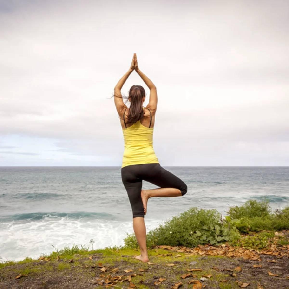 Поза дерева (врикшасана) :: позы стоя :: энциклопедия йоги: советы начинающим :: портал о йоге хануман.ру