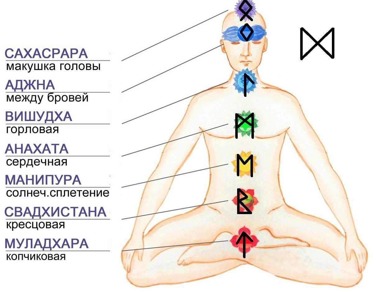 Свадхистана чакра. активация 2 чакры. свадхистана: как открыть, очистить, медитация - планетарная йога: способы развития осознанности