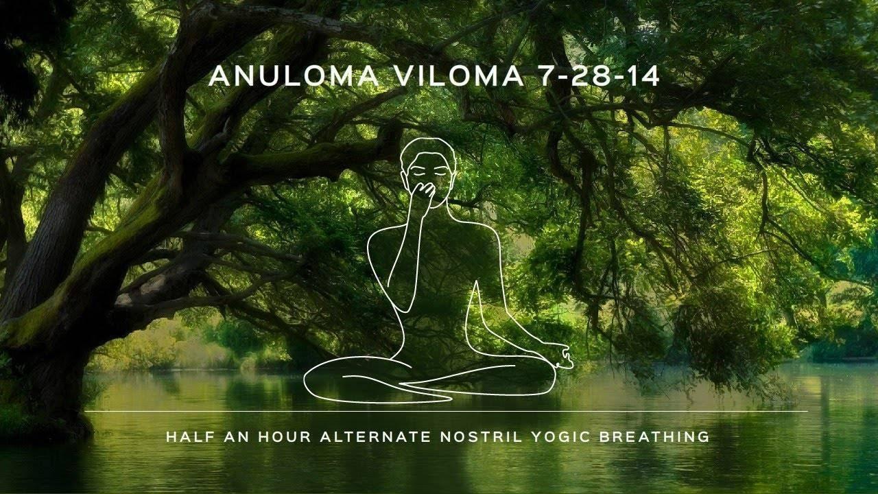 Пранаяма - техника дыхания в йоге для начинающих, дыхательные упражнения для работы с энергией   студия йоги чакра