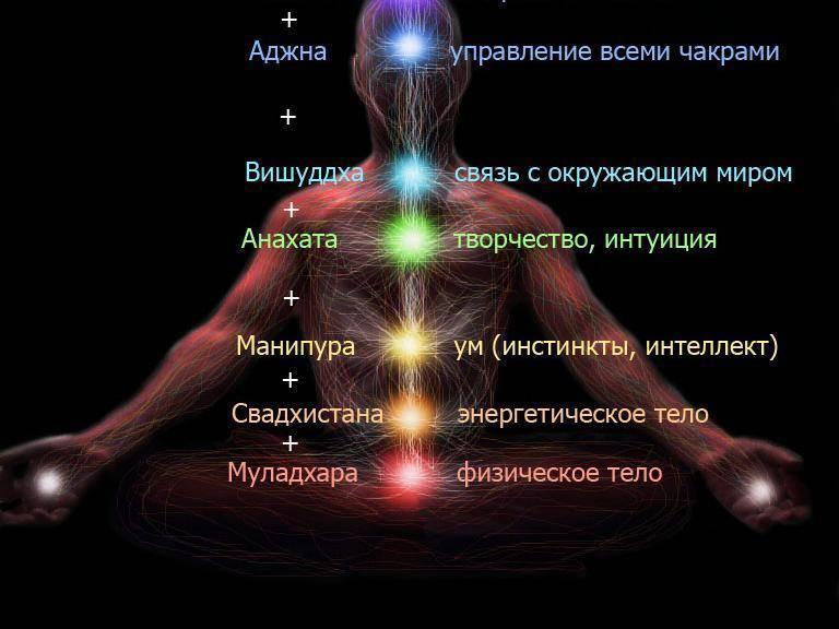 Важно знать: за что отвечает каждая чакра и на какие влияет органы