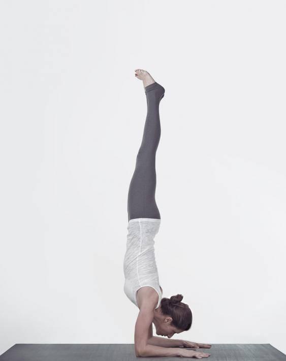 Кумбхакасана или поза планки в йоге: техника выполнения, польза, противопоказания
