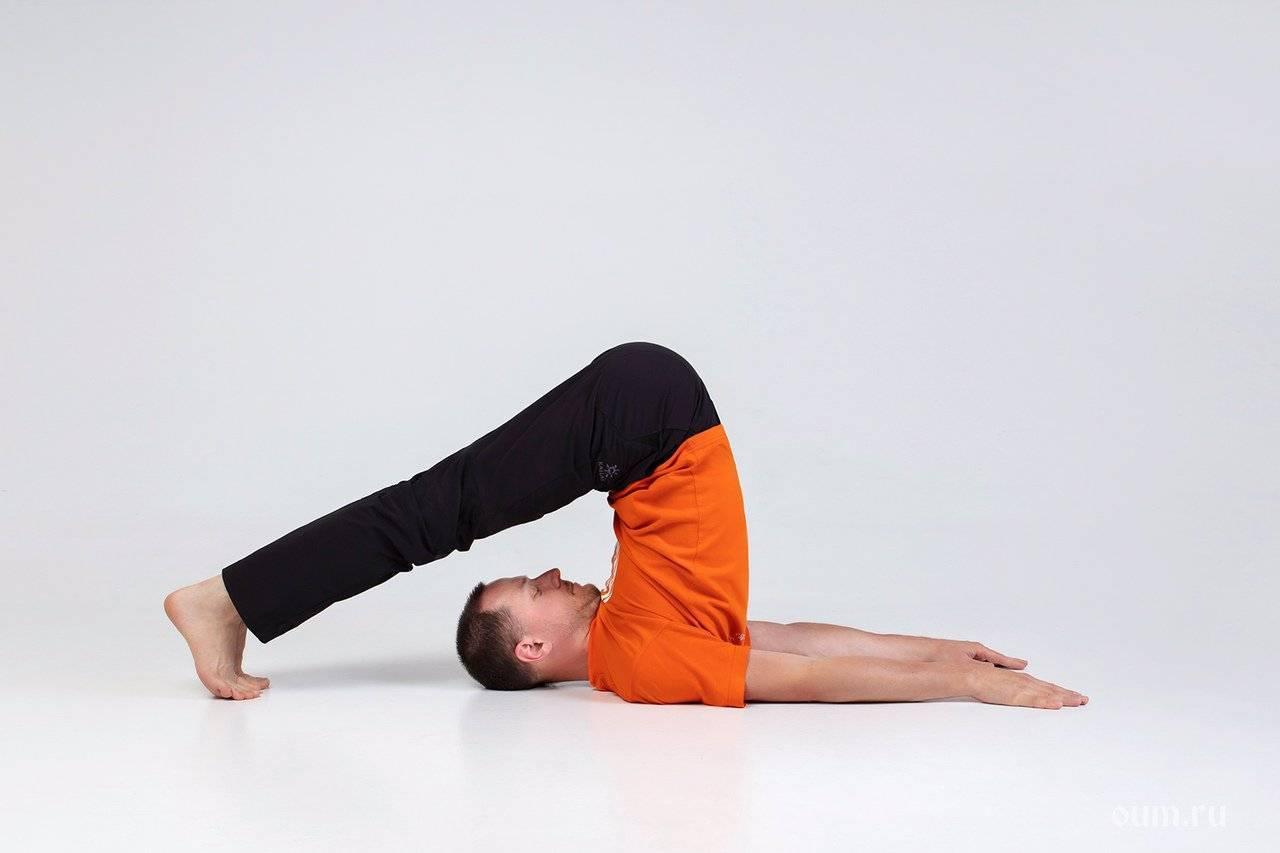Халасана: поза плуга в йоге и ее подробная техника выполнения, а также польза и противопоказания