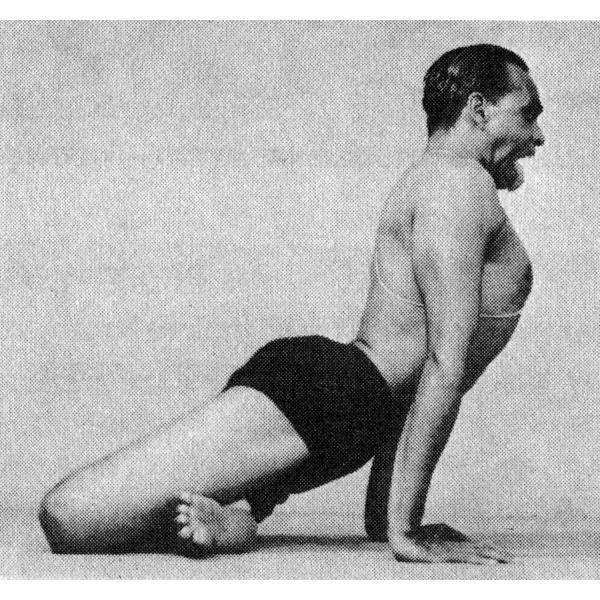 """Упражнение """"лев"""" и поза симхасана — простая йога для профилактики и лечения дыхательной системы, очистки от эмоционального шлака"""