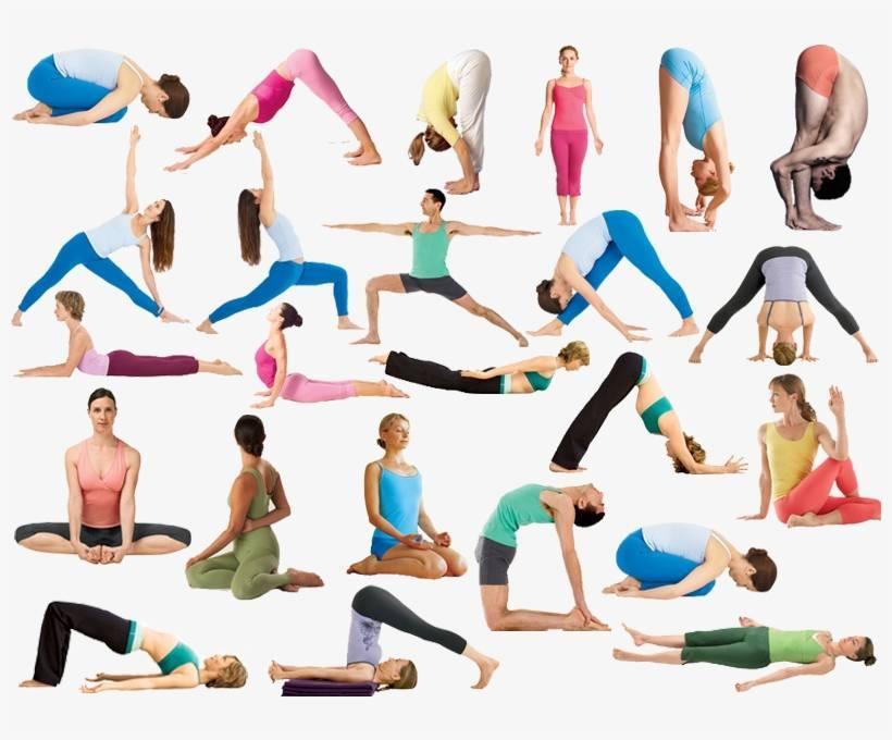 Хатха йога для начинающих: базовый комплекс для взрослых и детей