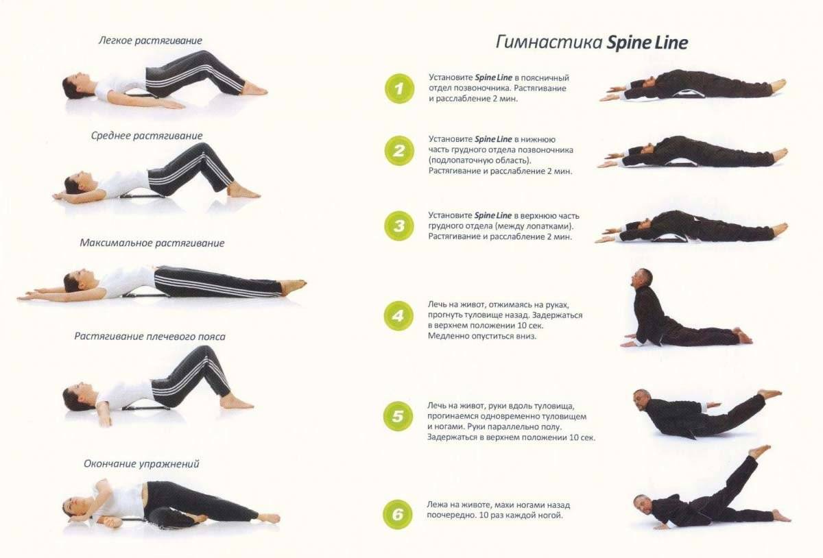 Йога при грыже позвоночника: все нюансы выполнения асан в период обострения и ремиссии