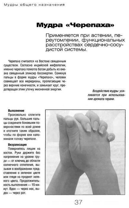 Йога для пальцев: 6 мудр, укрепляющих здоровье - om activ