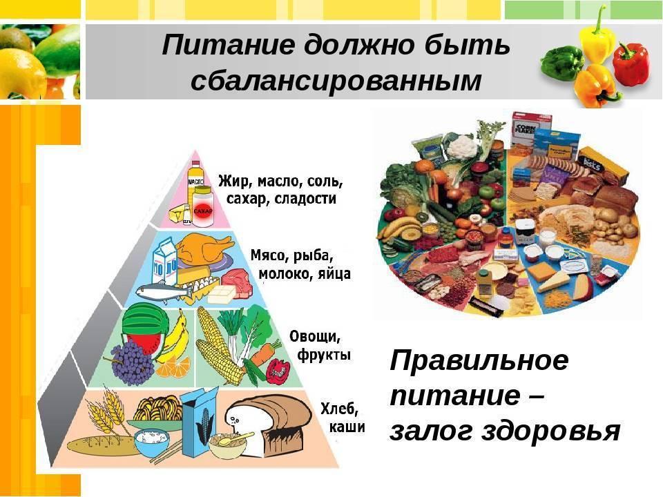 Принципы правильного питания. измени свой рацион