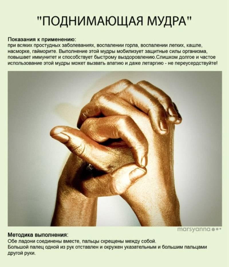 Читать книгу йога для пальцев. мудры здоровья, долголетия и красоты екатерина виноградова : онлайн чтение - страница 10