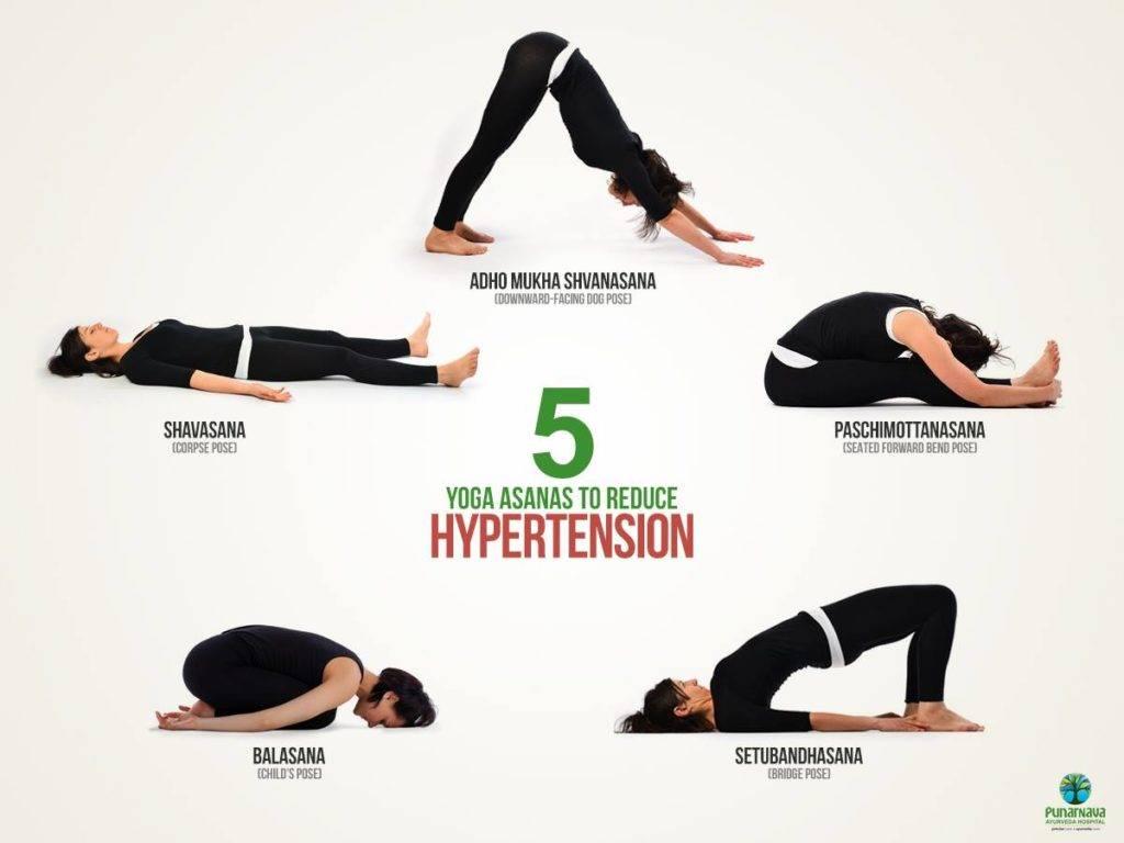 Йога при гипертонии: эффективные упражнения, мудры и асаны для самостоятельных занятий