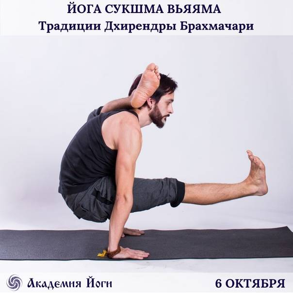 Йога сукшма-вьяяма