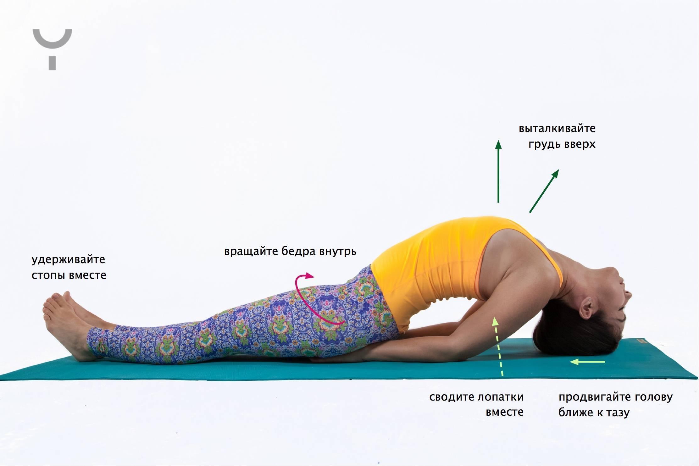 Дханурасана или поза лука в йоге: техника выполнения, польза, противопоказания