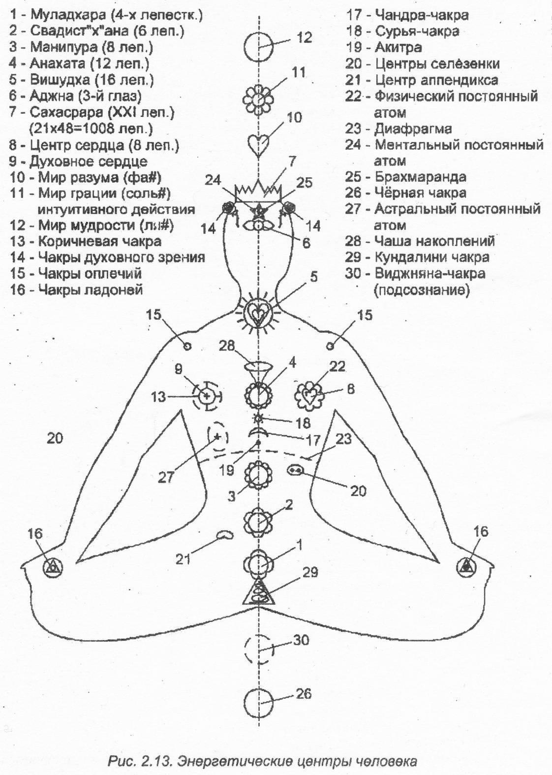 Муладхара чакра. быть выше страха