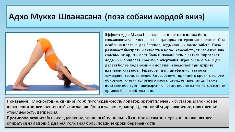 Хатха-йога для начинающих: йога утром