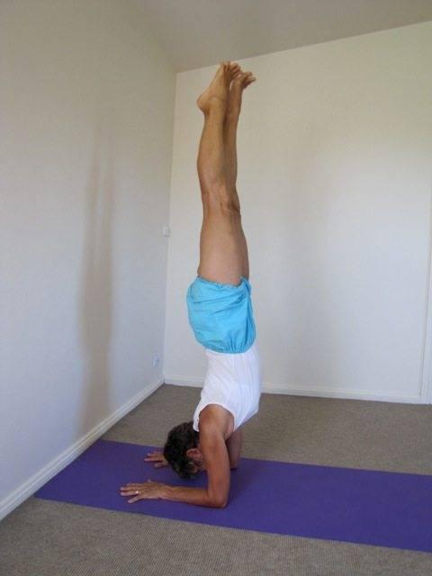 Маюрасана - поза павлина ▪️ йога асаны | svitlav