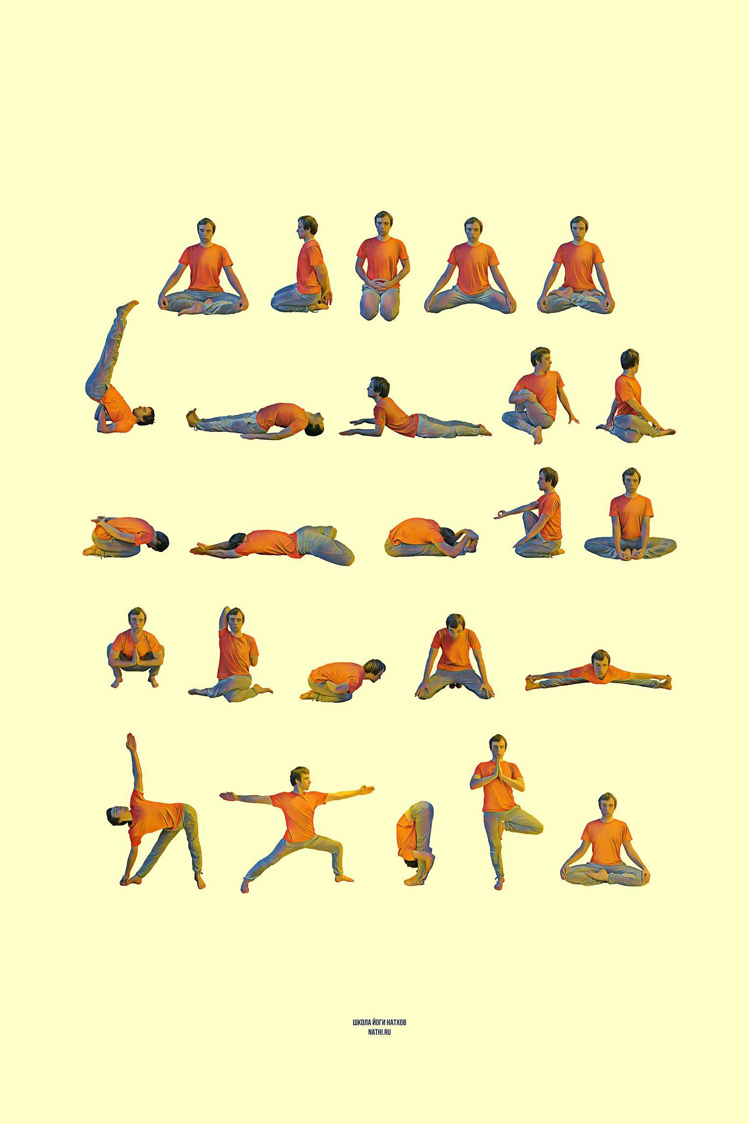 Йога для начинающих: какое направление выбрать?