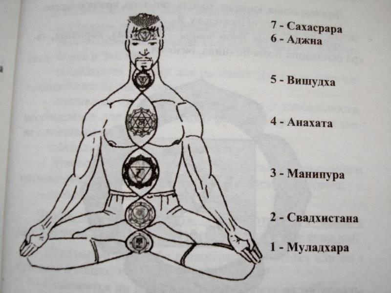 7 чакра сахасрара: за что отвечает и где она находится