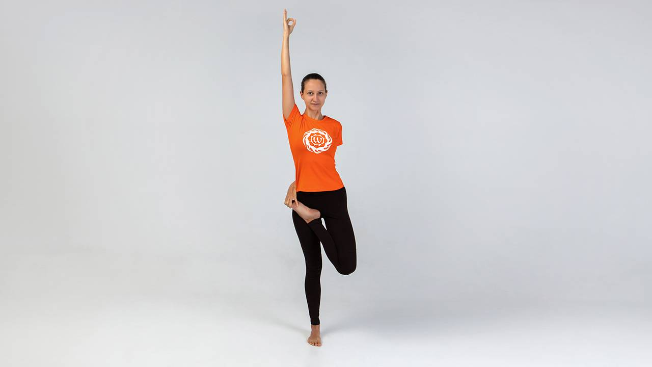 Титтибхасана: поза светлячка в йоге и ее правильная техника выполнения с фото