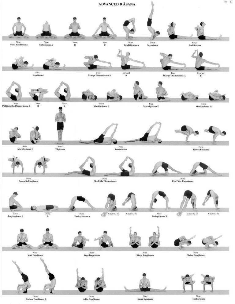 Аштанга-виньса йога: что это такое, для кого подходит и какую пользу приносит