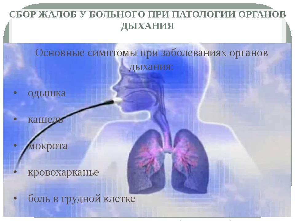 Как лечить заболевания дыхательных путей