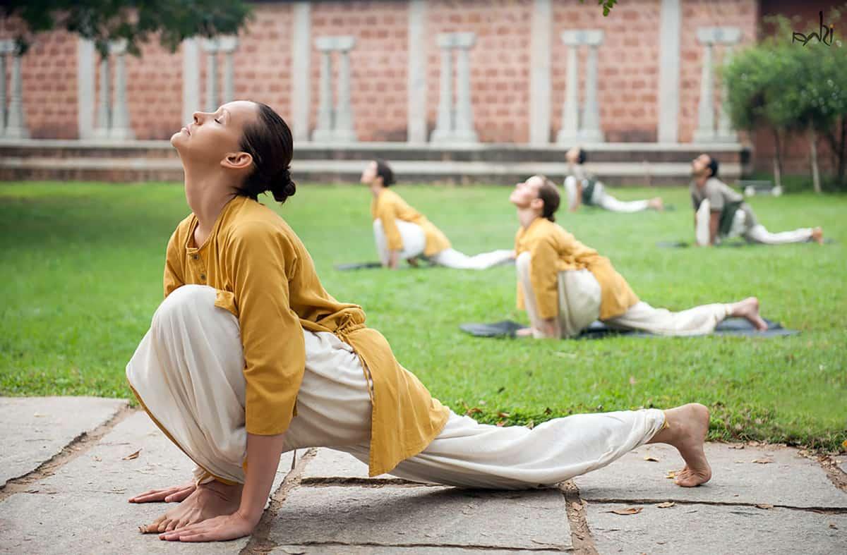 Мощное укрепление тела и духа – шивананда йога для всех