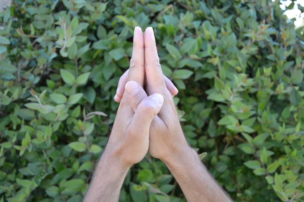 Мушти-мудра. исцеляющая сила мудр. здоровье на кончиках пальцев