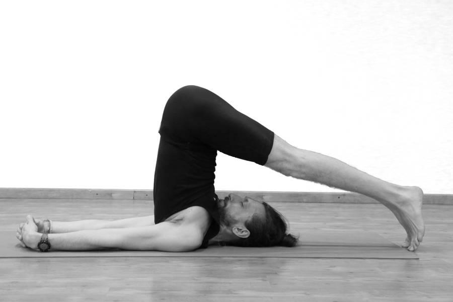 Поза плуга в йоге: польза и вред, техника выполнения