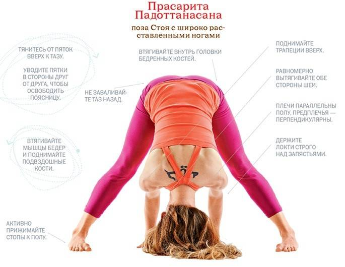 Читать книгу йога для начинающих елены ульмасбаевой : онлайн чтение - страница 5
