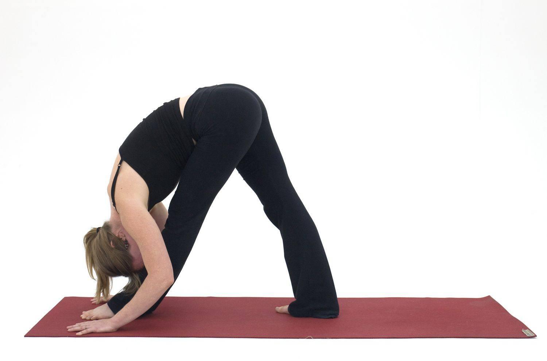 Йога стоя — советы по выбору упражнений, тренировки для начинающих и варианты укрепления здоровья
