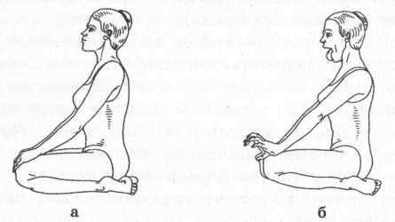 Симхасана, или поза льва для лечения горла: техника выполнения, отзывы