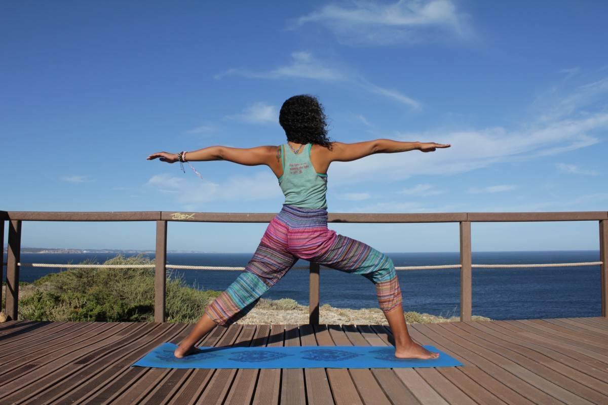 Виды йоги: как выбрать направление йоги для себя — колесо жизни