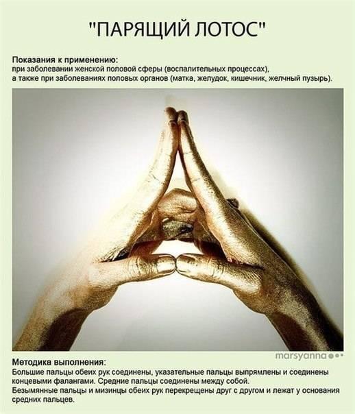 Мудра «парящий лотос». йога для пальцев. мудры здоровья, долголетия и красоты