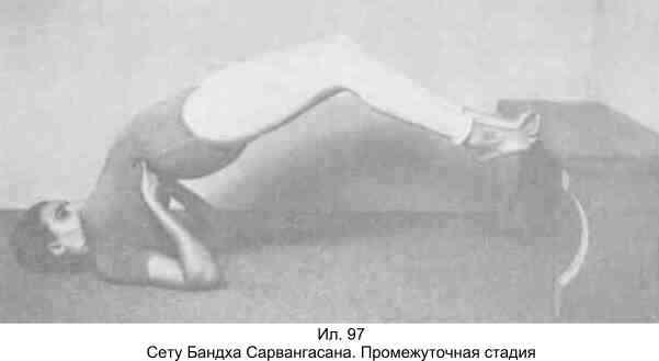 55.пашчимоттанасана (уграсана, брахмачариасана). поза растяжения спины и ягодиц. йога для детей. 100 лучших упражнений для укрепления здоровья
