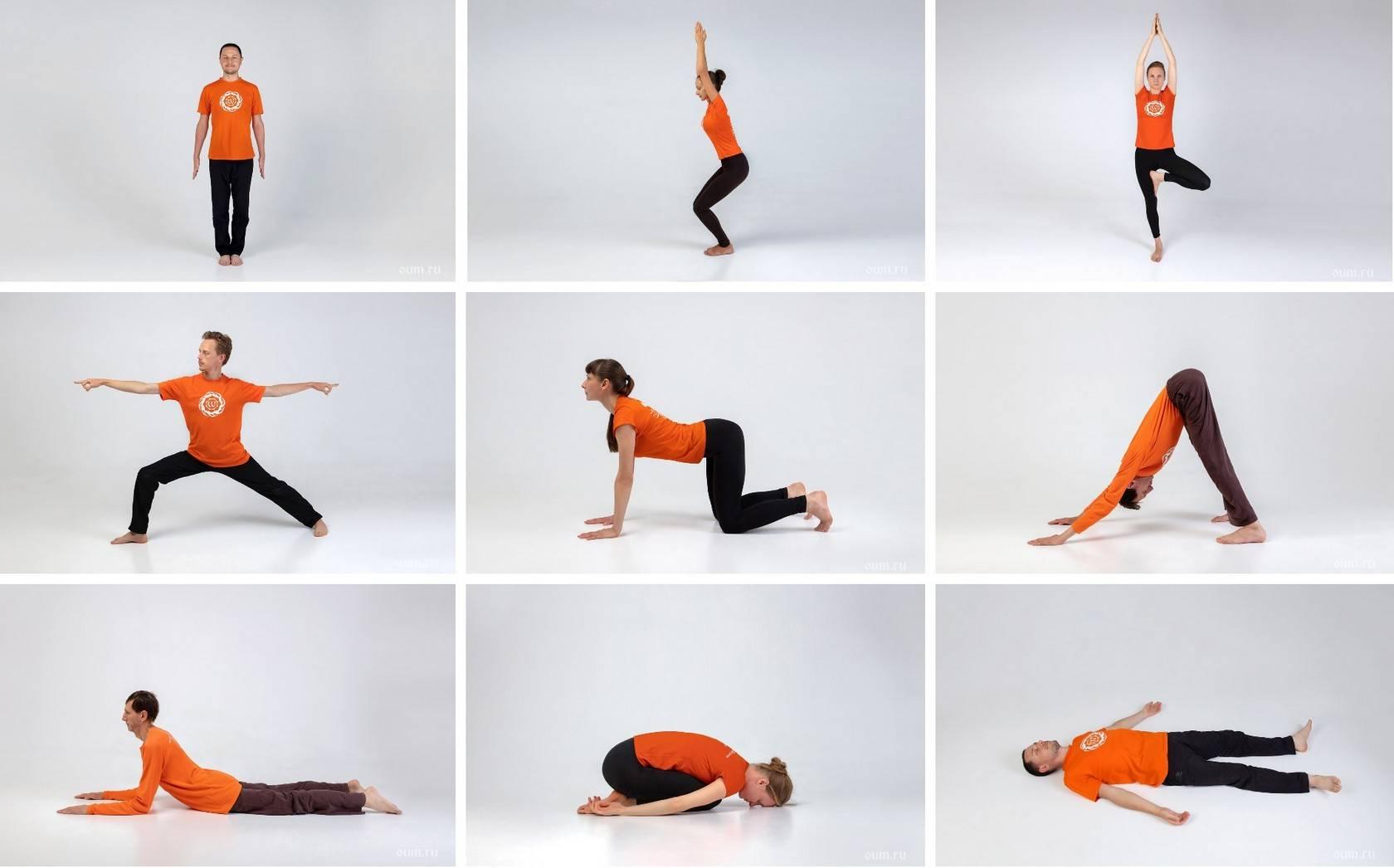 Йога для начинающих дома: 135 фото простых упражнений и советы как правильно заниматься йогой