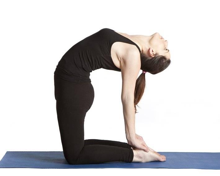 Секреты выполнения матсьясаны, техника позы рыбы в йоге, польза асаны