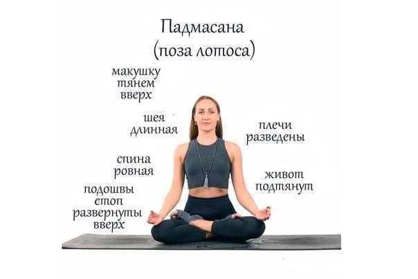 Как сесть в позу лотоса: пошаговые видео уроки с упражнениями йоги и растяжки - все курсы онлайн