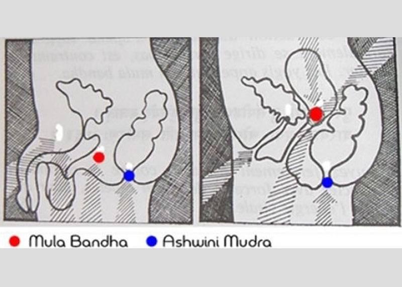 Джаландхара бандха или шейный замок: техника выполнения горлового замка