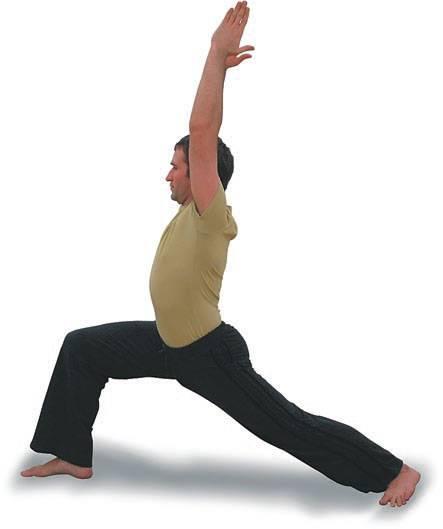 Секреты выполнения халасаны, техника позы плуга в йоге, польза асаны
